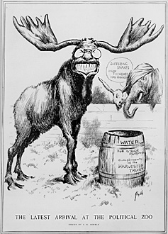 caricature of Roosevelt as a bull moose