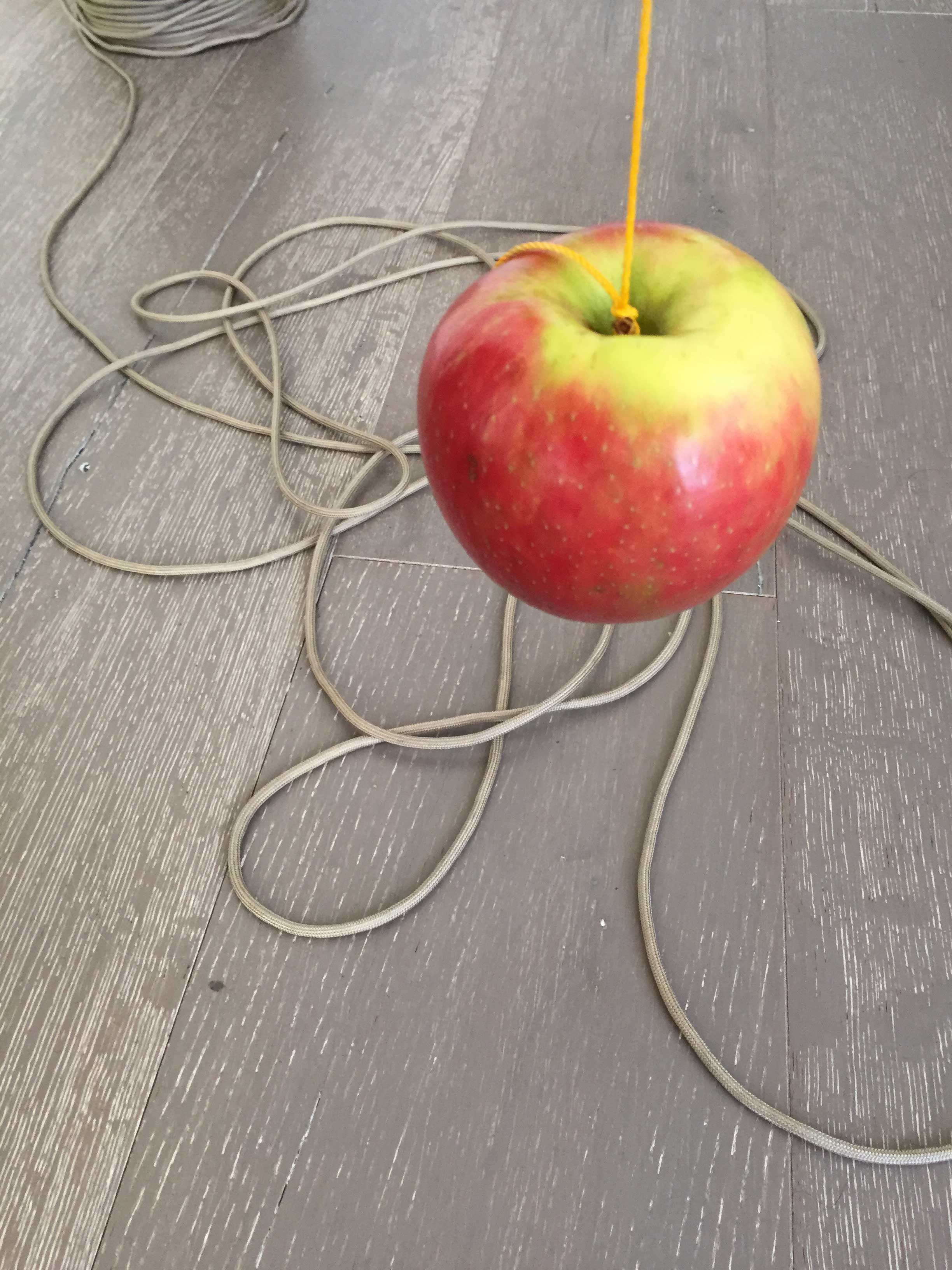 Photograph of an apple tied to a piece of string sitting on a wooden background