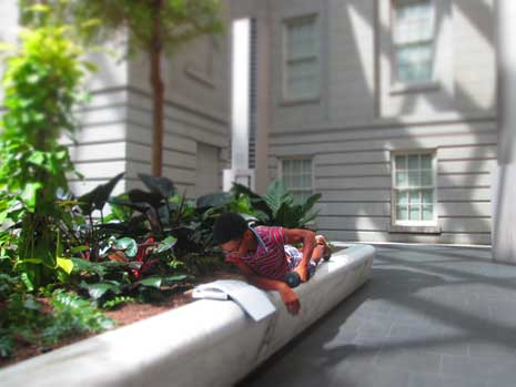 Evann Pace, reading next to planter in courtyard