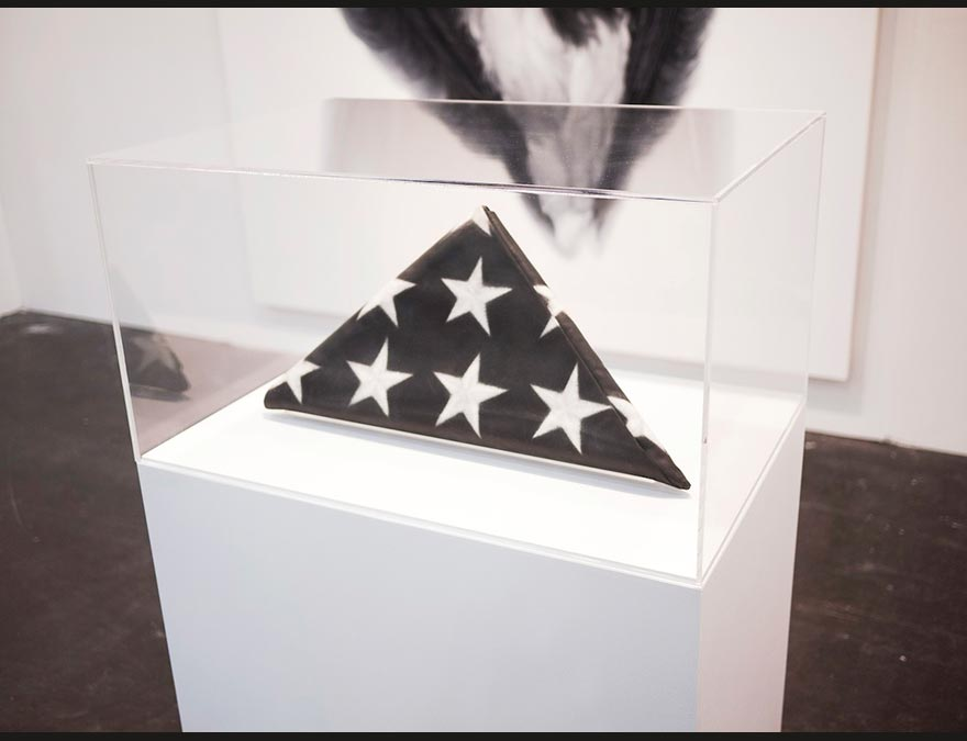 Photo of a folded flag in an enclosed case