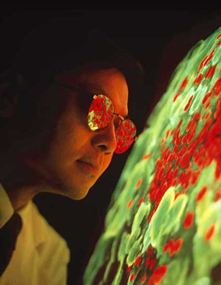 Photograph portrait of David Ho, wearing reflective glasses and looking at a display screen showing green and red cellular structures