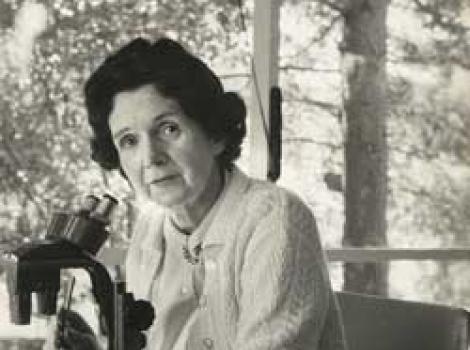 Portrait of Rachel Carson