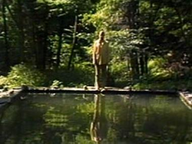 Man in a green woods about to jump into a reflecting pool
