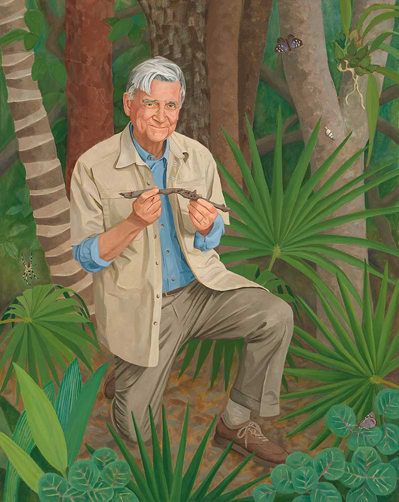 painting of E.O Wilson in forest holding a stcik with ants on it